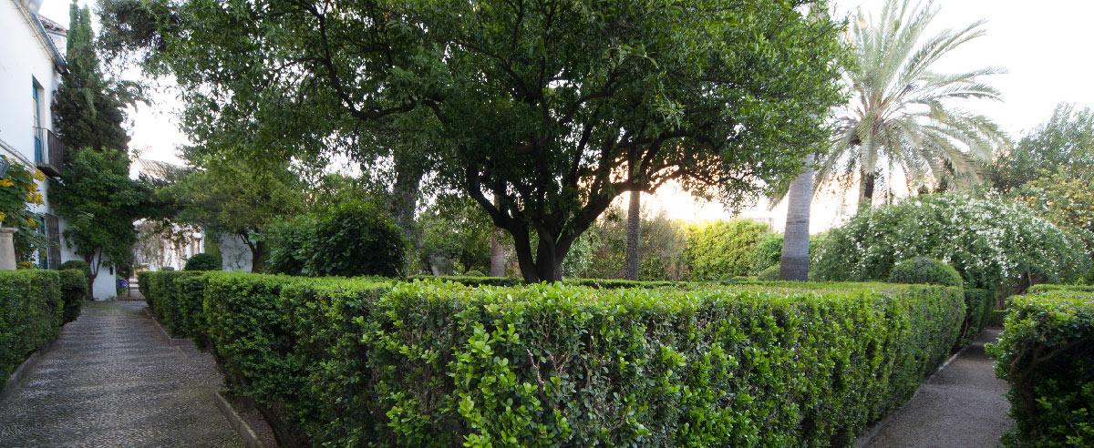 El jard n palacio de viana - El jardin del deseo pendientes ...