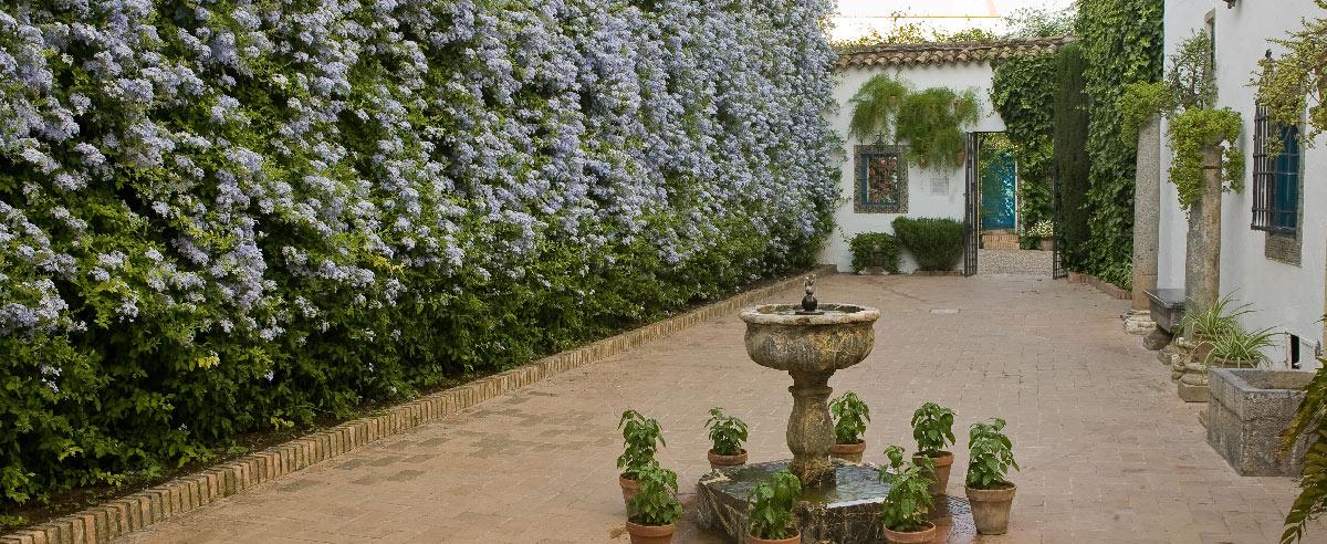 Azulejos patio gallery of a watercolor of a patio in an - Azulejos de patio ...